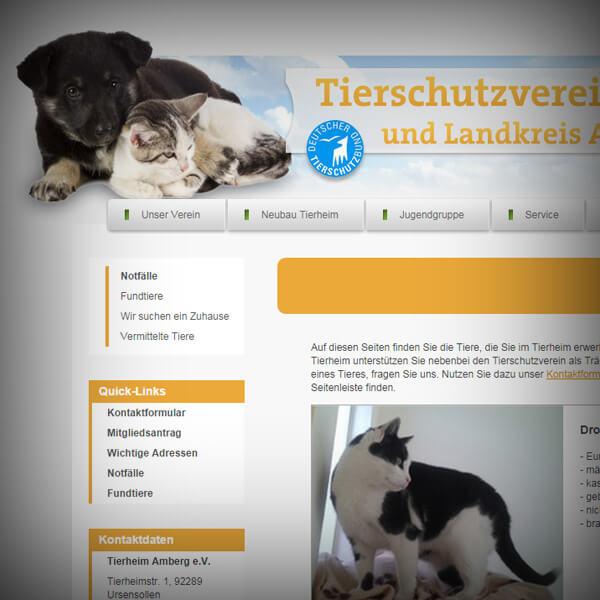 Tierheim Amberg - Webseite